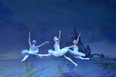 balet-49
